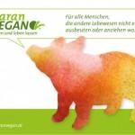 PR Bild Maran Vegan, Werbesujet Schwein